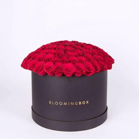 Blooming Box Flowers