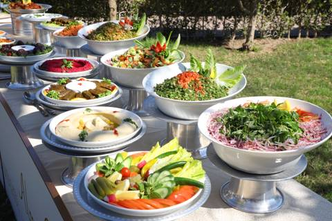 Lebanese Armenian Buffet for 10 Persons